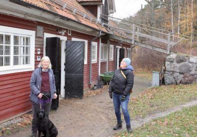Stallet på Skogsö fyllde 50